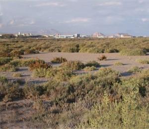 Alicante_agua_amarga_8948_IGLg