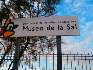 museo-de-la-sal-santa-pola-